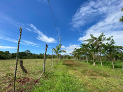 Property for sale Montezuma Costa Rica