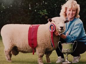 Royal Lancashire Show 1993