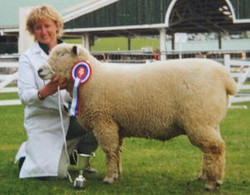 Great Yorkshire Show 1998