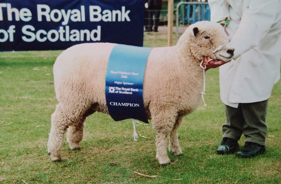 Royal Highland Show 2003