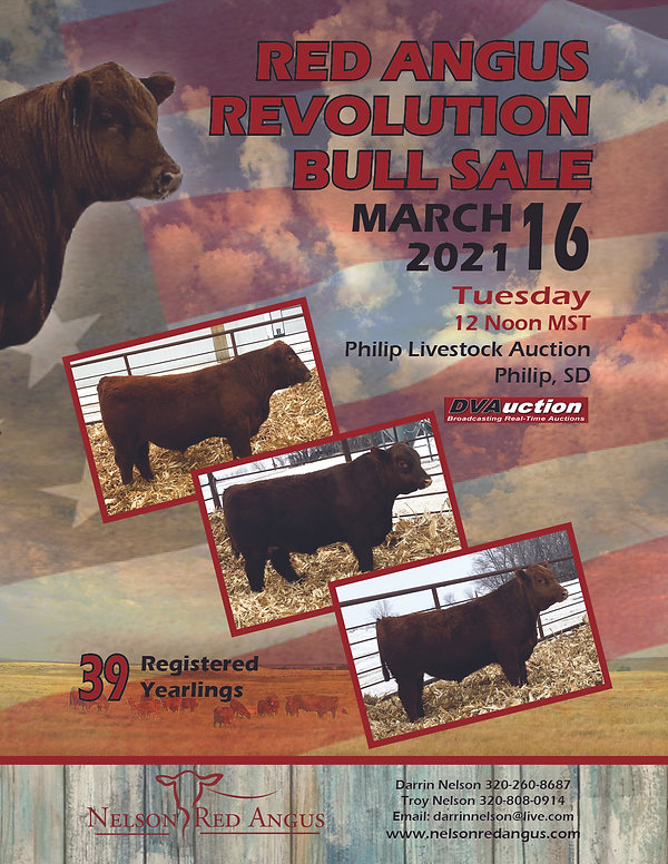 Nelson Red Angus Quarter Page ad 2021.jp