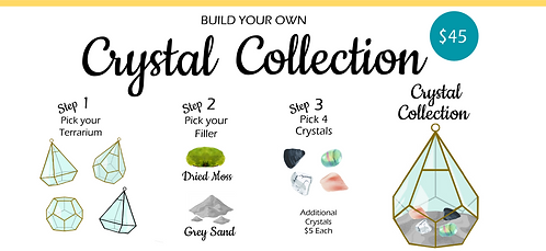 BUILD YOUR OWN COLLECTION - WITH TERRARIUM
