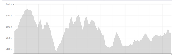 thumbnail_MMM 25km Course Elevation.png