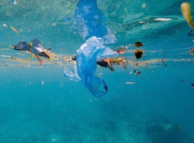 pollution in the sea