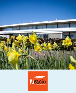 Pakket A - Nescio Hotel Groningen