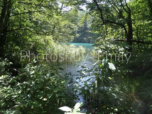 Goshiki-numa *Goshiki Pond* Fukushima, Japan Photo