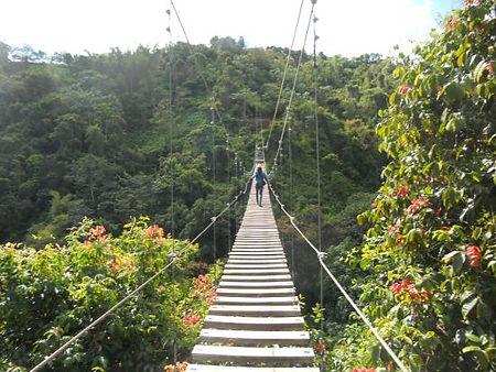 toro-verde-nature-adventure.jpg