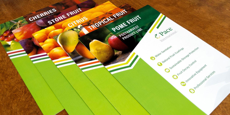 Pace brochure set
