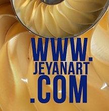 JN logo (2).jpg
