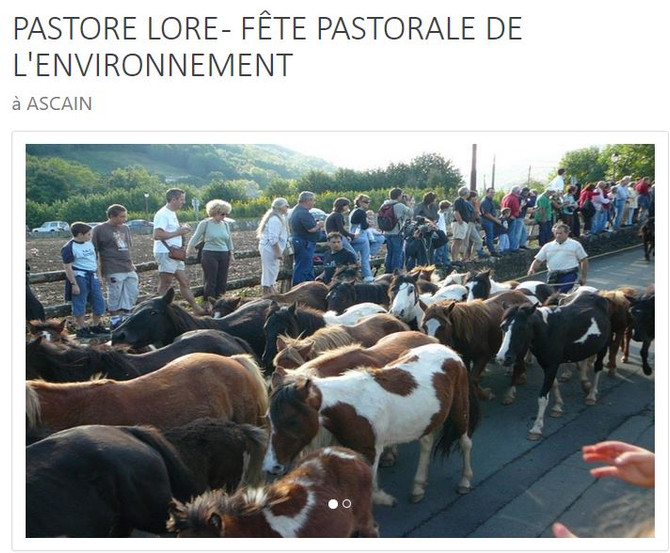 le13 octobre 2019, je serai toute la journée à Ascain pour la journée du Pastore Lore