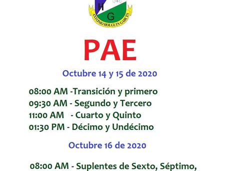 PAE: 14 AL 16 DE OCTUBRE DE 2020