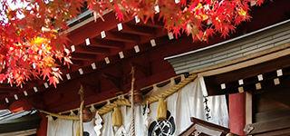 富部神社, 紅葉