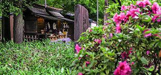 富部神社, 龍王社, 皐月