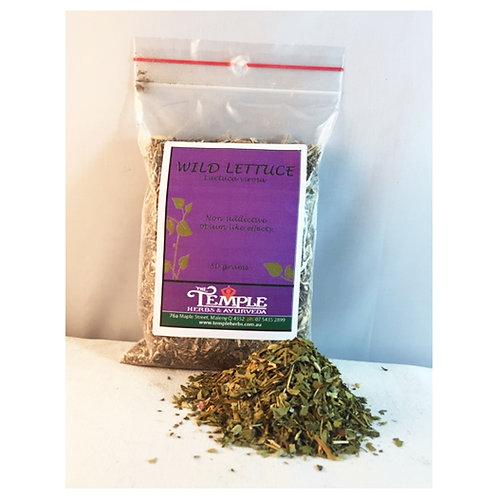 Wild Lettuce, 50 grams