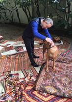 Sinbad Carpet&Kilim