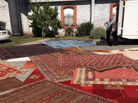 Sinbad's Kilim Collection