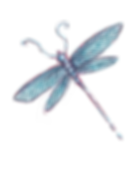Small Dragonfly.png