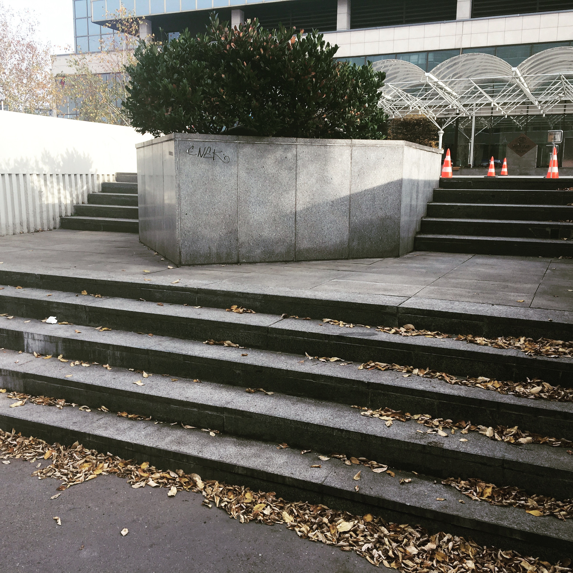 Ledge 5 stairs  