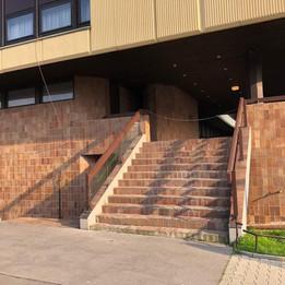 Rail 12stairs