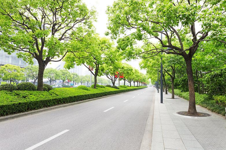 Asia_Street_AdobeStock_79952188(2).jpeg