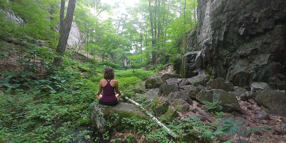 Atelier: Yoga et Nature Cyclique de la Femme
