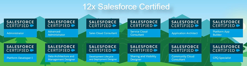SalesforceCertificateLogo_edited.jpg
