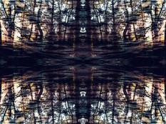 Marcello Muscolino - My New World - Contaminated Nature