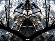Marcello Muscolino - My New World - Nature Revange 2