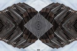 Marcello Muscolino - My New World - Wood Evolution