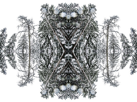 Marcello Muscolino - My New World - The Mountain of Rorschach