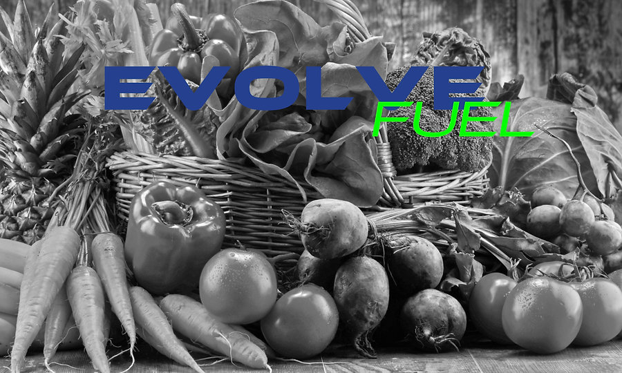 Wix-EVOLVEFuel.jpg