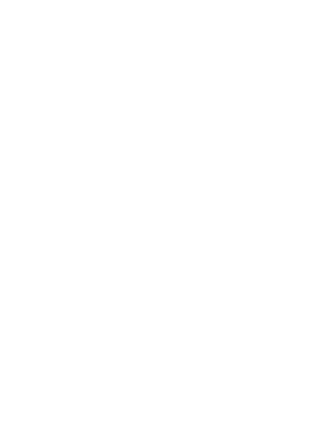 Angelica-Root-600x753 inverted.png