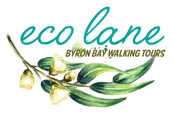 Eco_Lane_Tours_logo-med.png