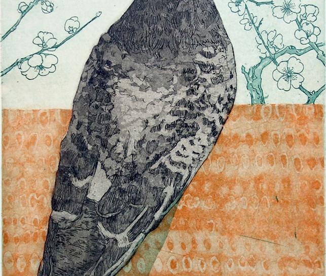 Pigeon looking left (Colour Way II)