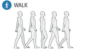 PROTOCOLO WALK.png