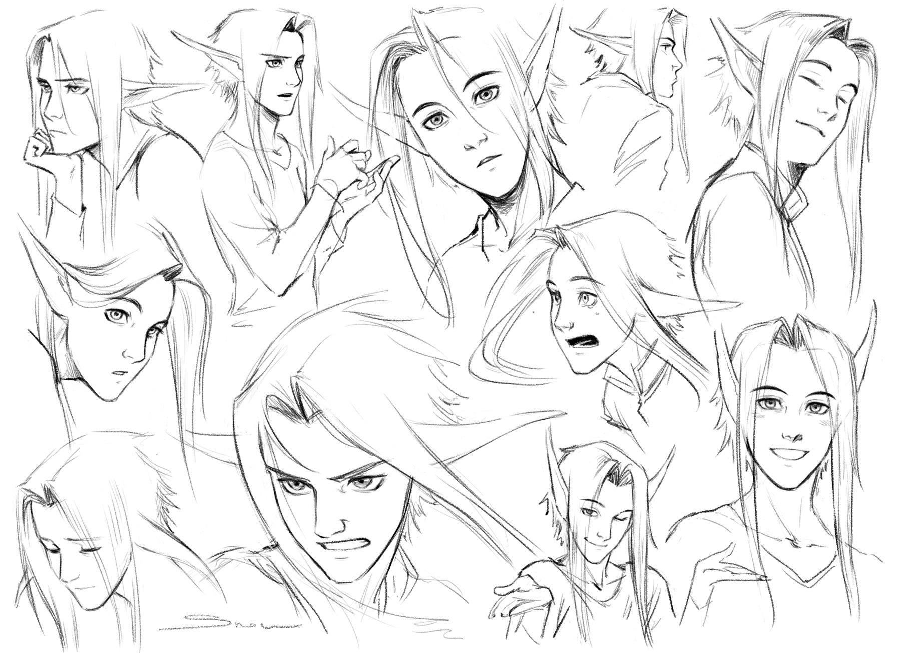 02b Robin facial