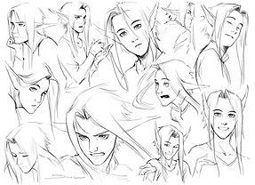 02b Robin facial.jpg