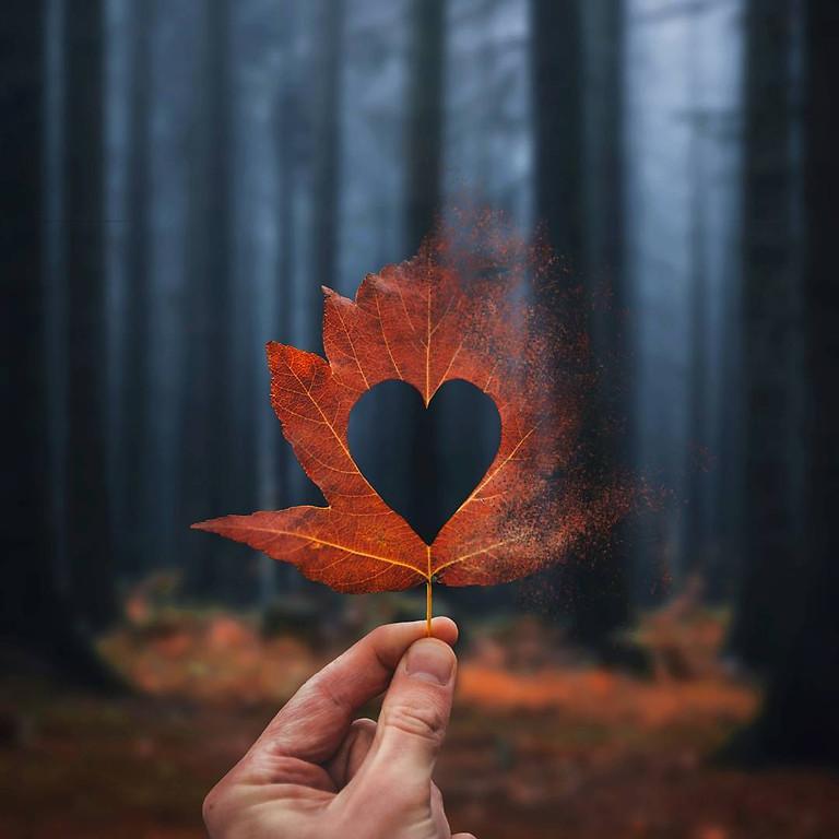 Vivre un automne serein