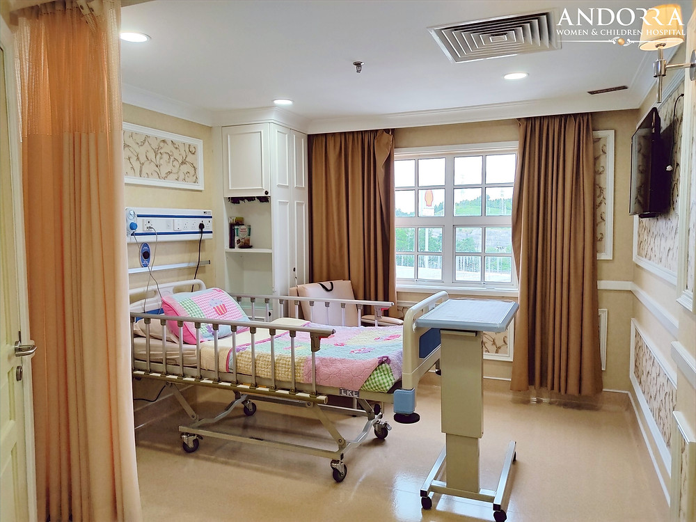 Single Bedded Room at ANDORRA Women & Children Hospital