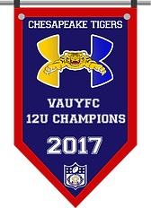 Championship banner tigers 12 2017.png