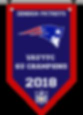 Championship banner pats 6 2018.png