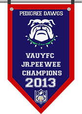 Championship banner DAWGS JRP 2013.png