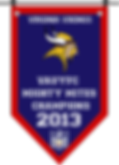 Championship banner VIKINGS MM 2013.png