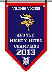 Championship banner VIKINGS MM 2013.png