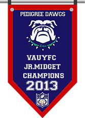 Championship banner DAWGS JRM 2013.png