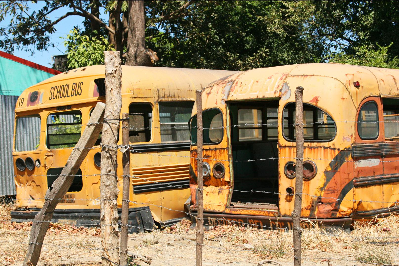 Buss skjelett