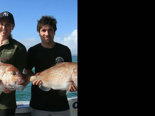Fishing Adventures on Days Out Bay of Islands