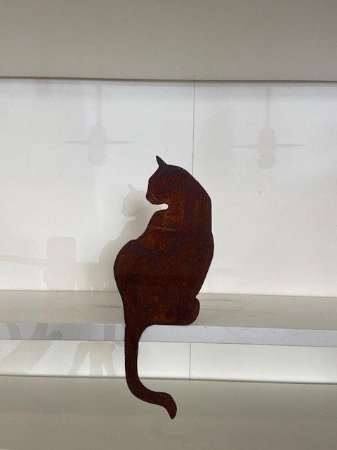 Gatto di spalle 3