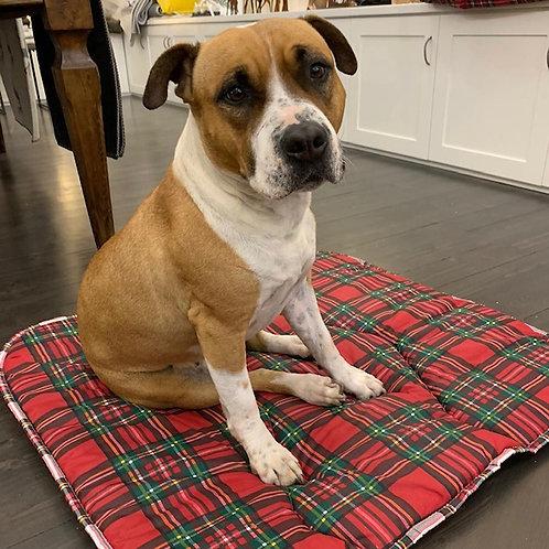 Cuscino cane tartan