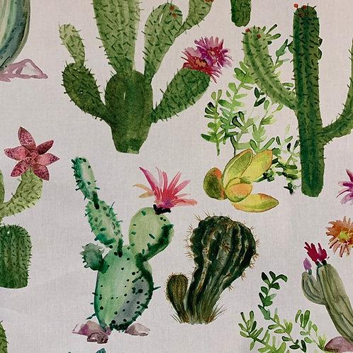 Cotone cactus